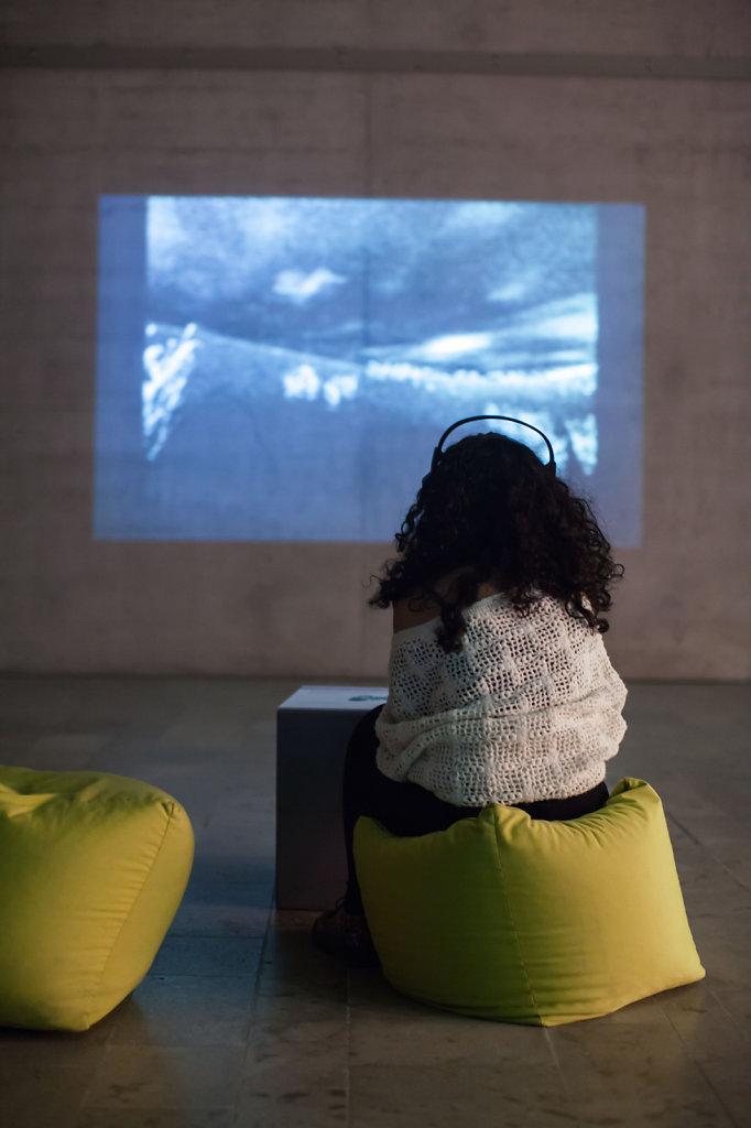 Ausstellung Raum, Festival kino der Kunst
